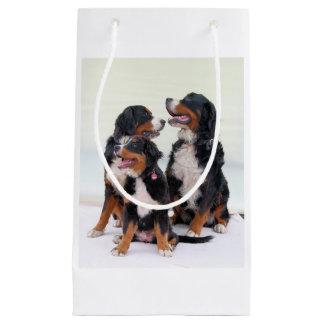 3 bernese山Dogs.png スモールペーパーバッグ