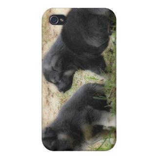 4のためのジャーマン・シェパードの子犬 iPhone 4/4S CASE