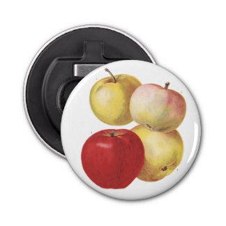 4個のヴィンテージのりんごの図解入りの、写真付きのな栓抜き 栓抜き