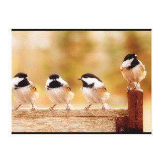 4匹のかわいい《鳥》アメリカゴガラ キャンバスプリント