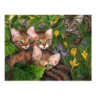 4匹の子ネコのクロッカスの郵便はがき ポストカード