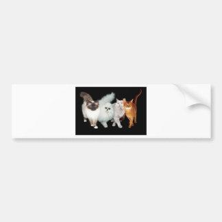 4匹の猫 バンパーステッカー