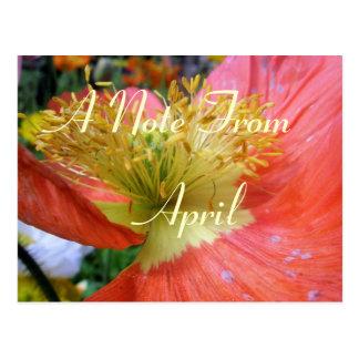 4月 ポストカード