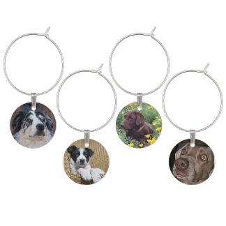 4枚の犬の写真 ワインチャーム
