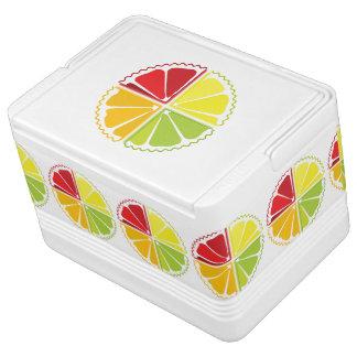 4柑橘類 イグルークーラーボックス