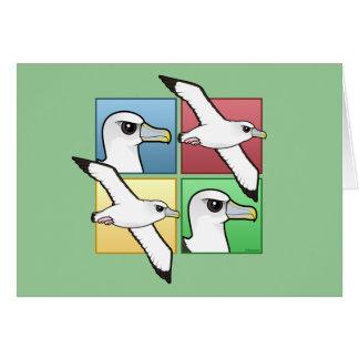 4色のアホウドリ カード