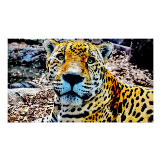 47頭X 27頭のジャガーの優れたキャンバスの光沢ポスター ポスター