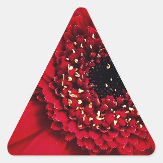 49.jpg 三角形シール