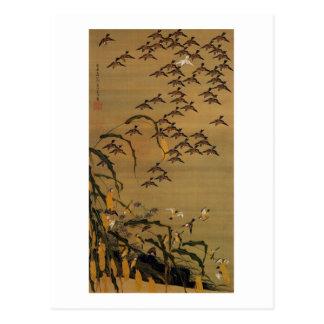 4. 秋塘群雀図、すずめの若冲の群、Jakuchū ポストカード
