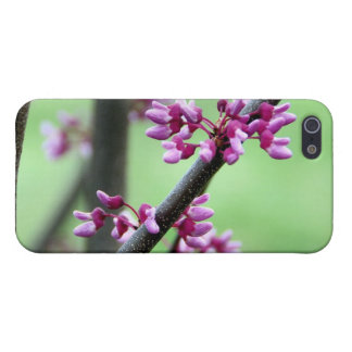 4 4月Redbud iPhone SE/5/5sケース