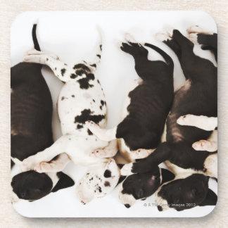 5匹の道化師のグレートデーンの子犬の睡眠 コースター