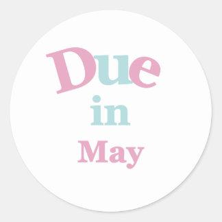 5月に当然のピンク ラウンドシール