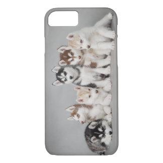 6つのハスキー iPhone 8/7ケース
