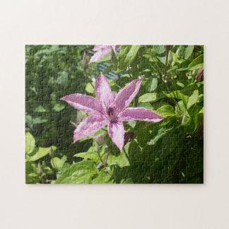 6つは星形の紫色の花味方しました ジグソーパズル
