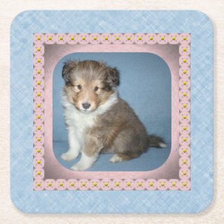 6の置かれるかわいいシェットランド・シープドッグの小犬のコースター スクエアペーパーコースター