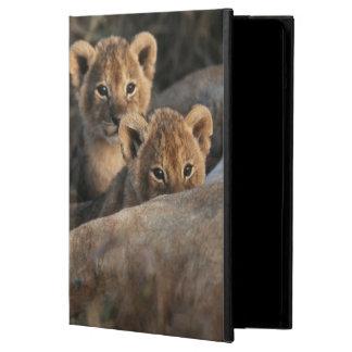 6週間の古いライオンの子の着席のトリオ iPad AIRケース
