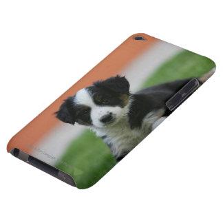 6 1週間目のボーダーコリー Case-Mate iPod TOUCH ケース