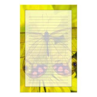8の蝶のSammamishワシントン州の写真 便箋