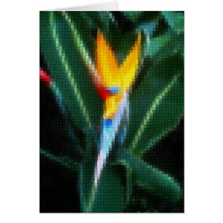 8モザイク極楽鳥 カード