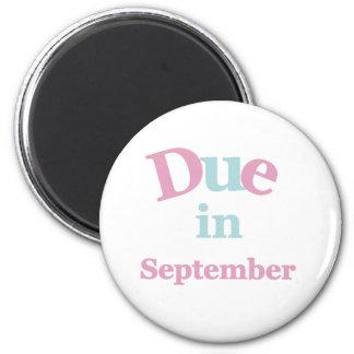 9月に当然のピンク マグネット
