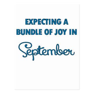 9月blue.pngの喜びの束の期待 ポストカード