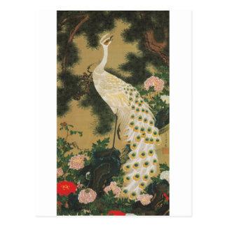 9. 老松孔雀図、若冲の古いマツ木および孔雀、Jakuchu ポストカード