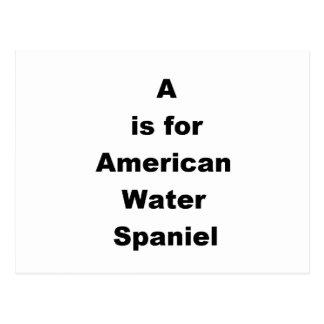 aはアメリカ水スパニエル犬のためです ポストカード