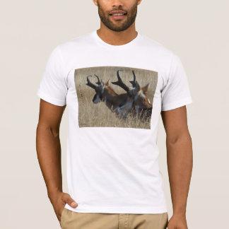 A0023 Pronghornのカモシカ Tシャツ