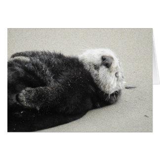 A dreaming sea otter グリーティングカード