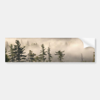Adirondacksの朝の霧 バンパーステッカー
