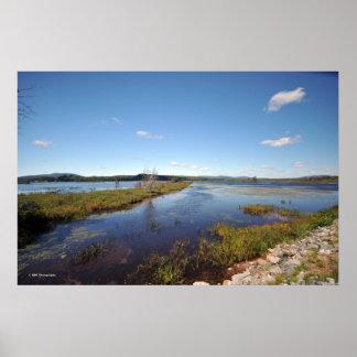 Adirondacksの沼地の土地。 プリント08 241 ポスター