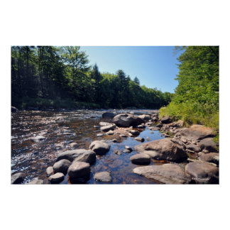 AdirondacksのAuSableの川。 プリント08 317 ポスター