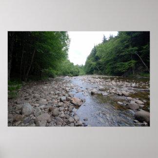 AdirondacksのAuSableの川。 プリント254 ポスター