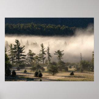 Adirondacks 4の朝の霧 ポスター