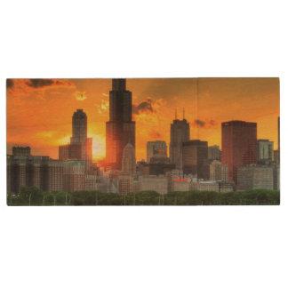 Adlerからのシカゴのスカイラインの眺め ウッドUSBフラッシュドライブ