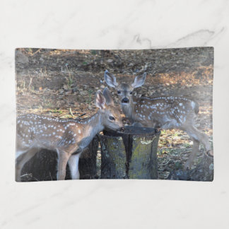 Adorable Spotted Fawns Trinket Tray トリンケットトレー