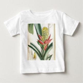 Aechmeaのmertensii (= mucroniflora) ベビーTシャツ