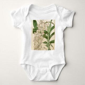 Aeridesのodorata (またはodoratum) ベビーボディスーツ