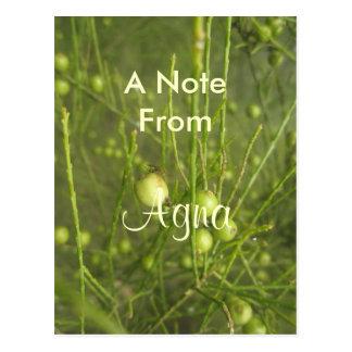 Agnaの一流のギフト ポストカード