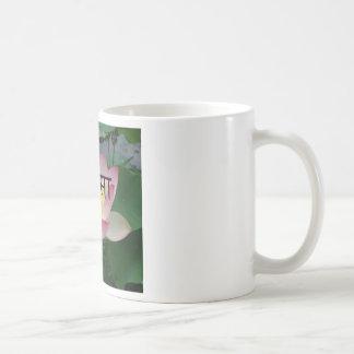 ahimsaのビーガン コーヒーマグカップ