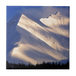 AIN summit湖Kenaiアラスカをささやく公園 正方形タイル小