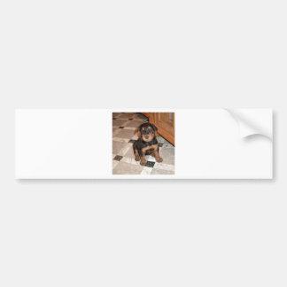 Airedaleテリアの子犬 バンパーステッカー