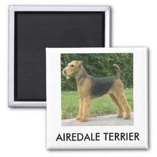 Airedaleテリアの磁石 マグネット