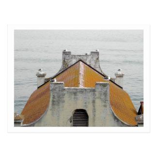 Alcatrazの鳥 ポストカード