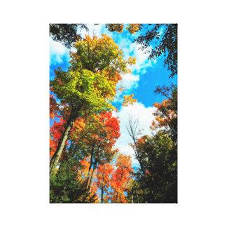 Algonquin、カナダの秋 キャンバスプリント