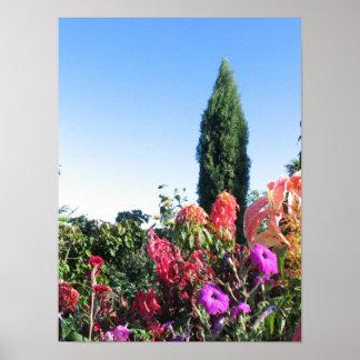 Allertonの庭、McBrydeの庭、入口 ポスター