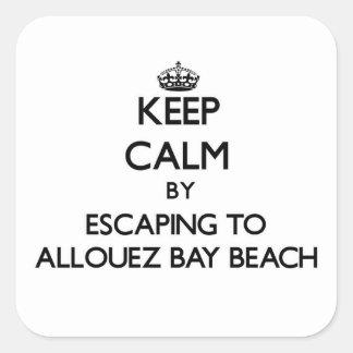 Allouez湾のビーチWisconsへの脱出によって平静を保って下さい スクエアシール