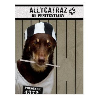 Allycatrazからの脱出 ポストカード