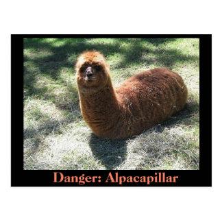 Alpacapillar ポストカード
