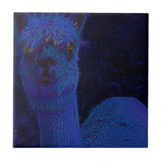 Alpacca タイル